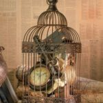 Here Are 46 Beautiful Ideas For Decorating With Bird Cages!!